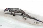반구대 암각화 발자국 주인은 신생대 멸종한 '코리스토데라'